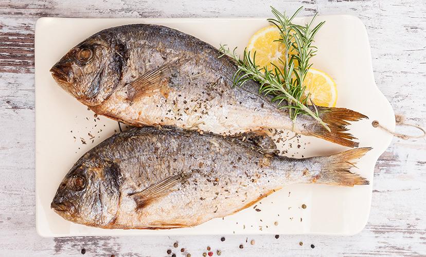Υπάρχουν πολλά περισσότερα ψάρια στη θάλασσα που βγαίνουν